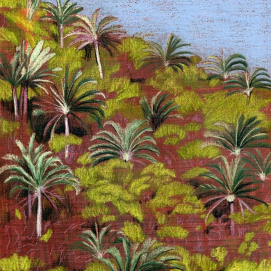 palmen_ 3_ansicht